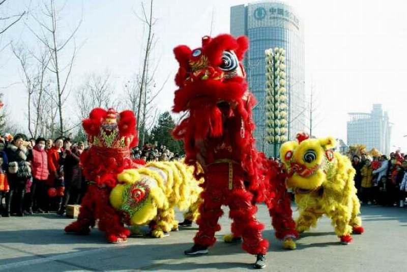 元宵影记之八——龙腾狮舞 - 古藤新枝 - 古藤的博客