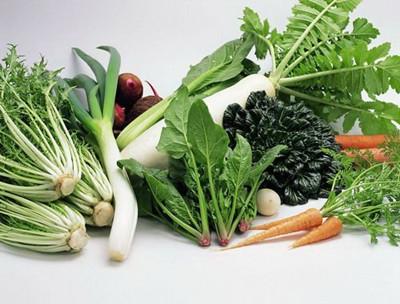 绿叶蔬菜真能帮你强健骨骼吗 - 范志红 - 原创营养信息