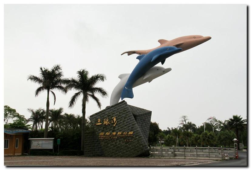 中华白海豚的故乡