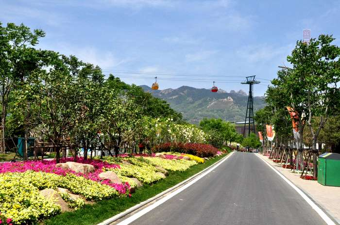 【原创摄影】走进青岛世园会——多彩之路 - 古藤新枝 - 古藤的博客