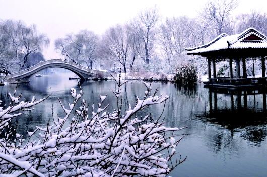 聚焦大明湖免费开放3 - 古藤新枝 - 古藤的博客