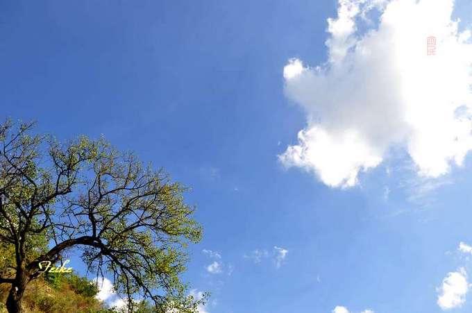 【原创影记】钟情十月蓝——印象杨集2 - 古藤新枝 - 古藤的博客