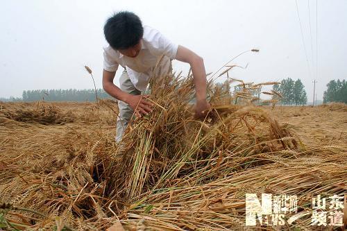 【原创】怒天 - lurenlaobao2009 - lurenlaobao2009的博客