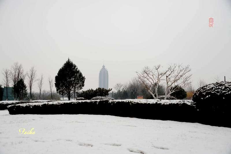 春节影记1——太公湖 - 古藤新枝 - 古藤的博客