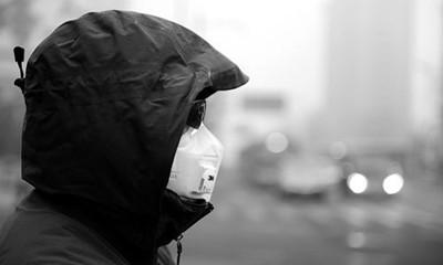 对抗雾霾的健康饮食忠告 - 范志红 - 原创营养信息