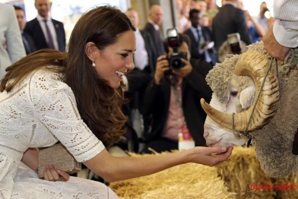 王室的耳畔优雅 凯特王妃的珍珠情结 - 嘉人marieclaire - 嘉人中文网 官方博客