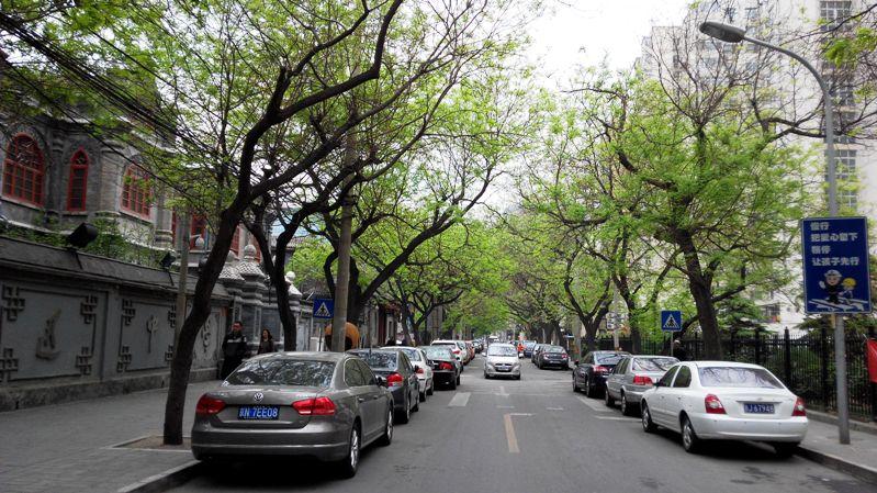 因为上午参加培训的缘故,得以在北京西单附近的新文化街走了走。多年之前自己是曾经偶然光顾过的,街东口附近的百饺园曾经去吃过,还有就是在那一带帮过一个在那租房的同事搬过家。而今天能不疾不徐地漫步其中,低矮的胡同灰砖房,乍才迎春还透显着年少意味的青绿槐树叶子,不闹腾不过于宽阔的巷道,时不时还冒出点历史的痕迹,都有着让我颇为喜欢的感觉。