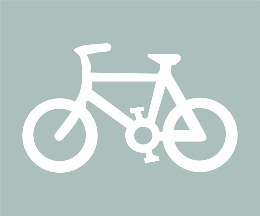 这个路面标记是何含义?A、自行车专用道B、非机动车道C、摩托车专用道D、电瓶车专用道答案是B