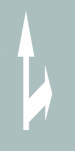这个导向箭头是何含义?A、指示向右转弯或掉头B、指示直行或右转弯C、指示直行或向右变道D、指示直行或掉头