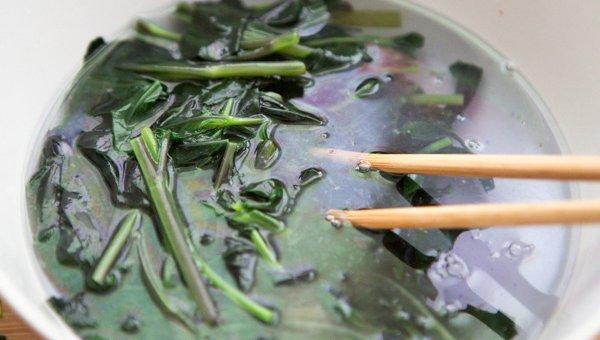 女人不能少不了深绿色蔬菜---小米辣拌紫背天葵 - 慢美食 - 慢 美 食
