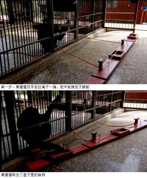 刘植荣:改革必须考虑人的心理博弈 - 刘植荣 - 刘植荣的博客