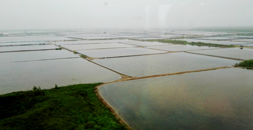 盛夏北国行——北戴河边的渔村 - 海军航空兵 - 海军航空兵