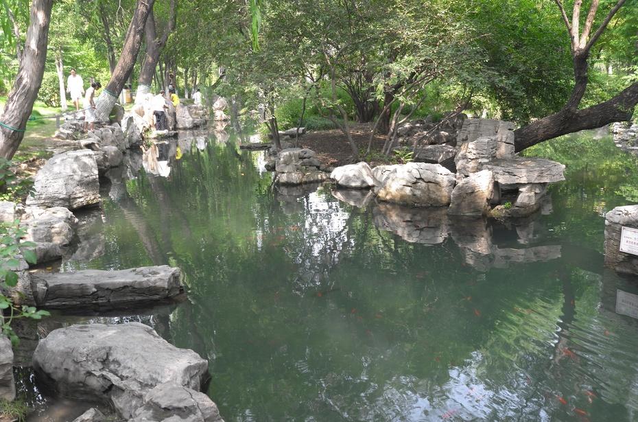 官纯博客_五龙潭 | 泉城最美最纯的泉水净池-幸福像花儿一样-搜狐博客