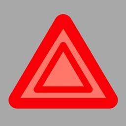 開啟危險報警閃光燈時,(如圖所示)閃爍。答案是對
